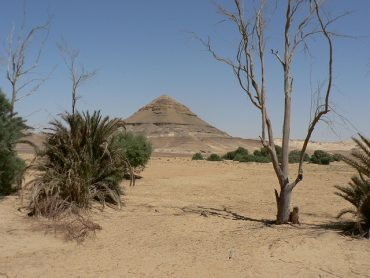Desertification In Egypt Is Putting Food Supplies At Risk