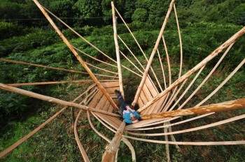 environmental art, green design, sustainable design, Woodland Design Lab