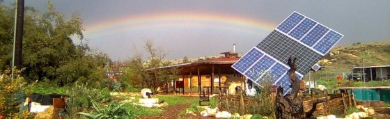 """permaculture farm israel"""