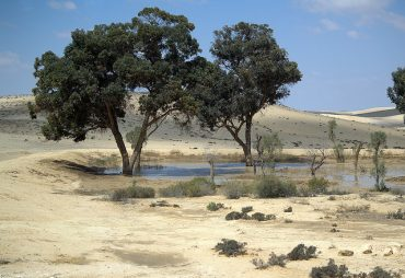 Water And Israel – The Facts