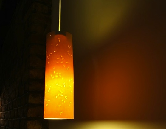 "lightexture, ""energy efficient lamp design"""