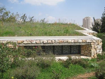 Jerusalem's Green-Roofed Gutman Center is a Home for the Birds and the Bees
