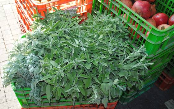 Sage, Wormwood and Lemons: November Seasonal Produce in the Middle East