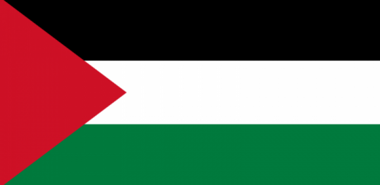 800px-Flag_of_Palestine.png