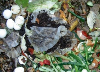 compost, new years resolutions, environment, green lifestyle tips, cycling, electricity, energy efficiency, water conservation, recycling,