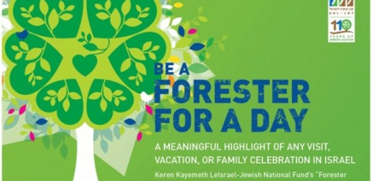 forester-eco-tourism-israel.jpg