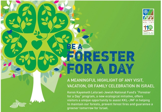 "Eco-Tourists to Israel Can Now Be a ""Forester For a Day"""