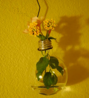"""light bulb hanging vase"""