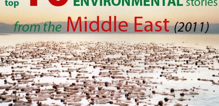 top-10-environmental-stories-middle-east-2011.jpg