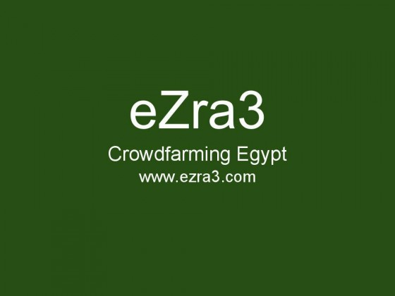 crowdsourcing, crowdfarming, sustainable agriculture, organic agriculture, permaculture, food, health, Egypt