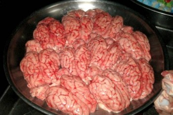 Food and Health, Mad Cow Disease, Cow Brains, Fried Cow Brain Sandwich, Sudan, Smuggling, Cairo, Egypt