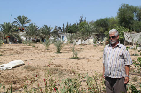 Gazan Farmers Struggle With Rising Salinity & Water Shortages