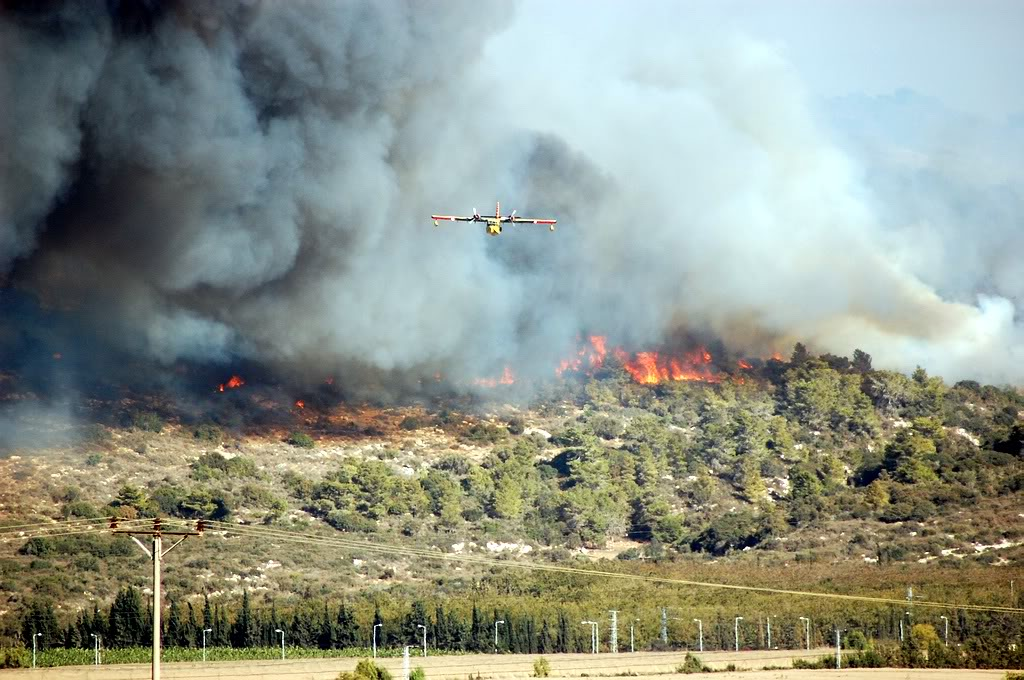 Israel's Carmel Wildfire Blame Goes All the Way to the Top