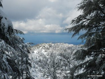 Treat Your Valentine to a Hot Snowshoeing Tour in Lebanon