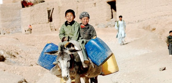 afghan boys carrying water on donkey