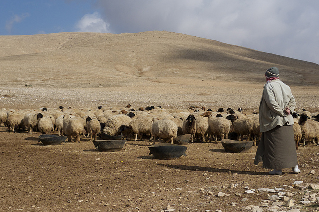 Syrian Farmers Increasingly Vulnerable