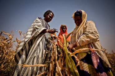 A Clarion Call for Sahel Drought Victims