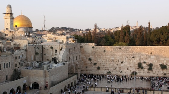 Jerusalem's Western Wall for the Birds