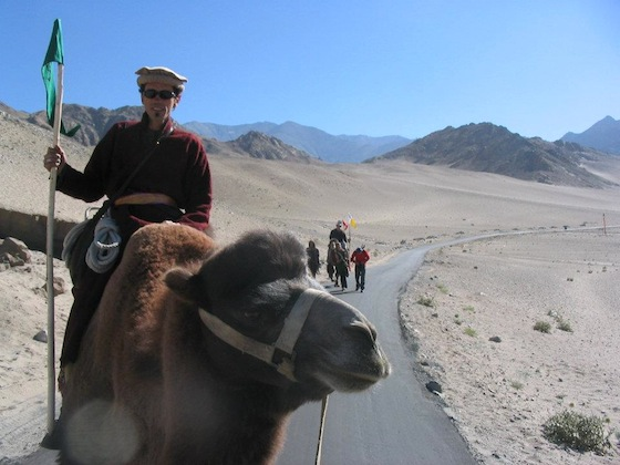 Documentary, travel, nature, camels, India, adventure, Collective Moments of Madness, Kamahl Film