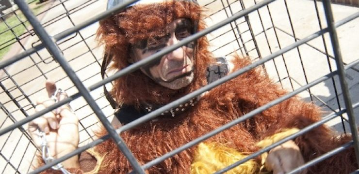 wild-man-monkey-zoo-cage-research-israel.jpg