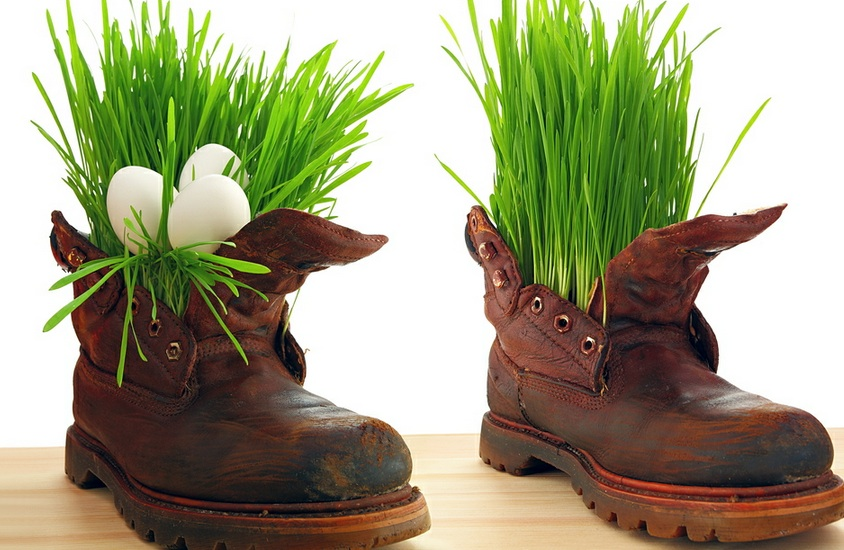eco army cyprus going green army boots, grass and eggs