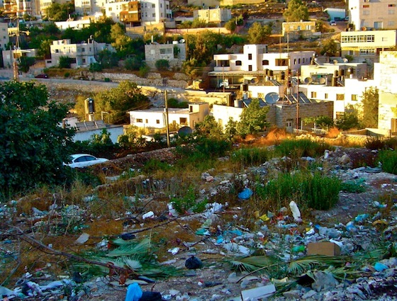 Investing in Ramallah's Children Key to Sustainability