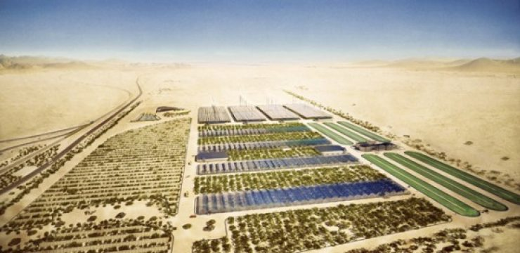 sahara-forest-project.jpg