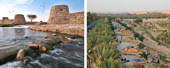 wetlands, Saudi, Wadi Hanifah, bio-remediation, river rehabilitation, water
