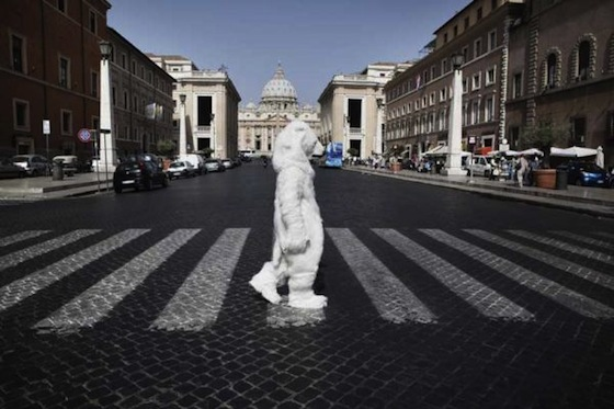 greenpeace save the arctic polar bear in rome