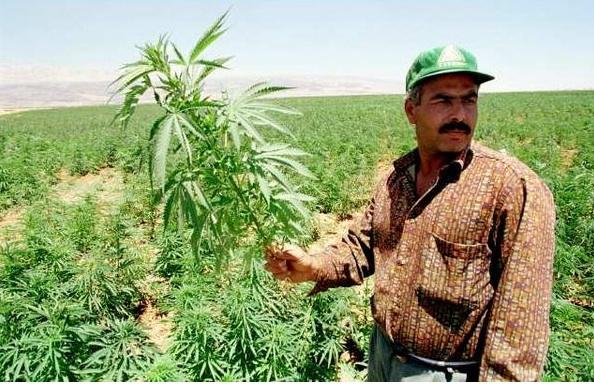 Hashish Field Wars Between Soldiers and Lebanon's Locals
