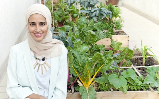 it-all-grows-gardening-organic-kuwait-alzainah-food-middle-east-green