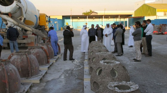 Bahrain's Artifical Reef a Success After 16 Weeks