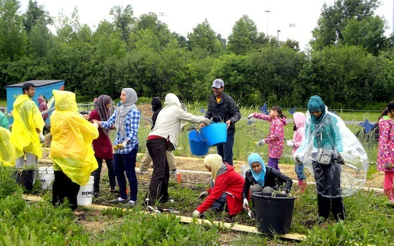 Muaz Nasir green islam environment civic muslims community gardening