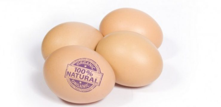 organic-eggs-label.jpg