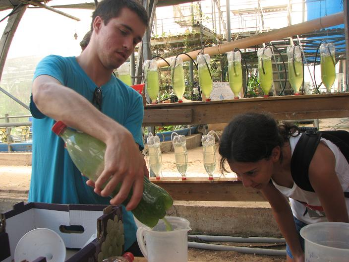 Arab and Jewish Teenagers Grow Algae for a Greener Future