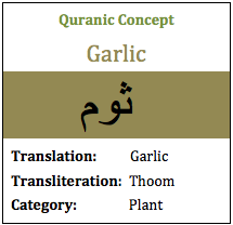 garlic herbs plants quran