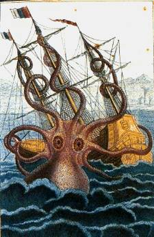 colossal octopus by pierre denys de montfort kraken giant squid