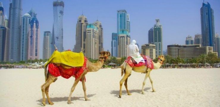 camels-in-front-of-dubai.jpg