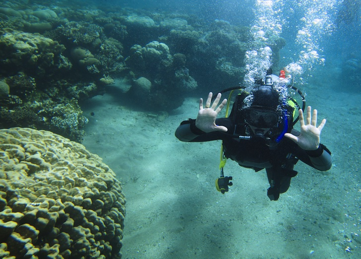 Egypt's First Female Dive Master Speaks Out