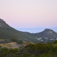 Tafline Laylin, nature, travel, photography, art, eco art, Earth Day, Cape Town, South africa, fynbos, sunset