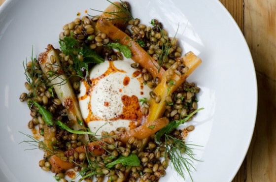food, health, freekeh, grain, quinoa, slow food, sustainable food, ancient middle eastern grain