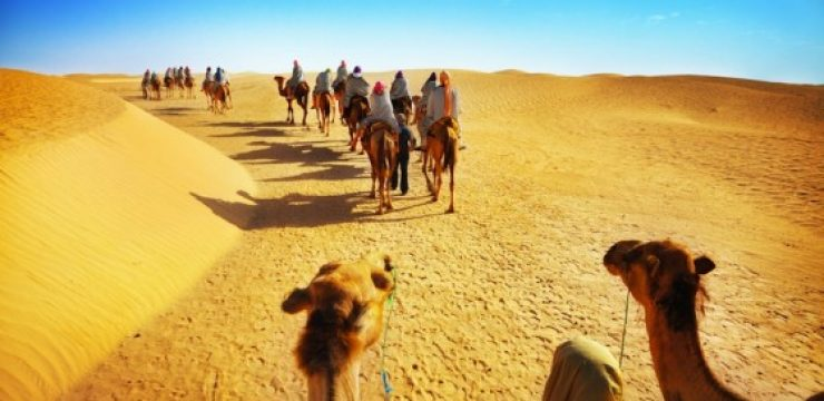 camels-and-people-in-the-sahara-desert.jpg
