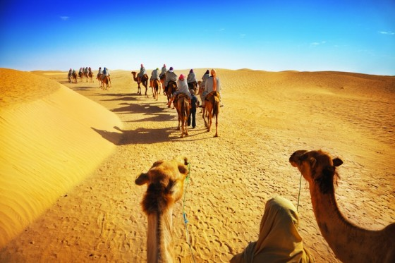 sahara, green sahara, Columbia University, MIT, Woods Hole Oceanographic Institution, African Humid Period, camels, science, climate change
