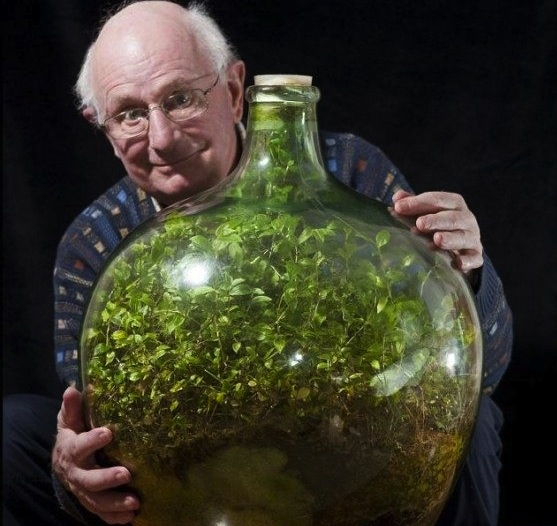 David-Latimer-bottle-terrarium after 50 years