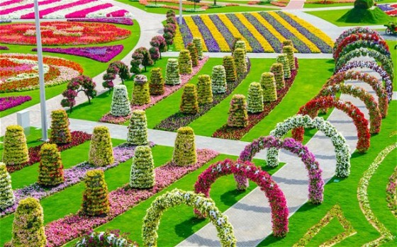 Miracle garden, vertical garden, Dubailand, Dubai, World's largest vertical garden, butterfly garden, edible garden in Dubai
