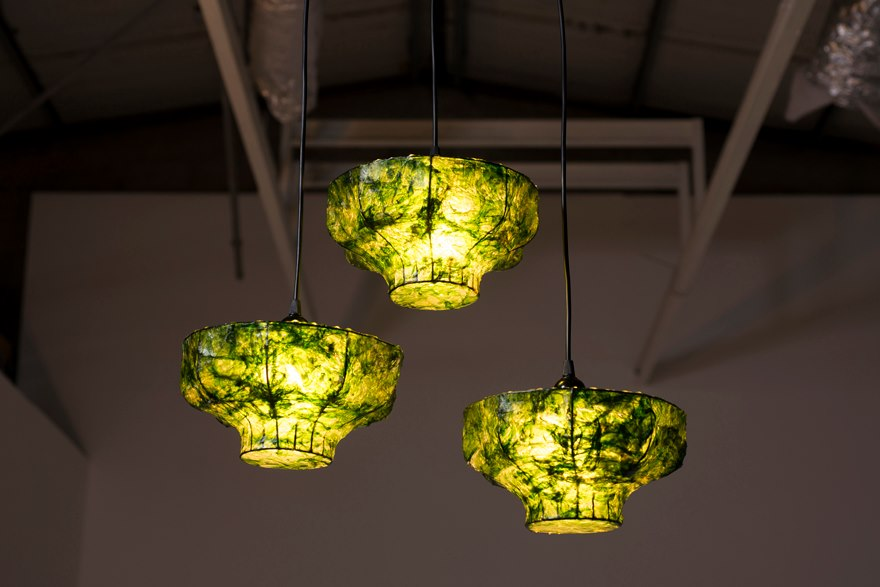 Nir Meiri S Marine Light Is A Sustainable Seaweed Lamp You