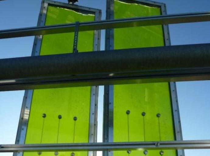 algae power panel