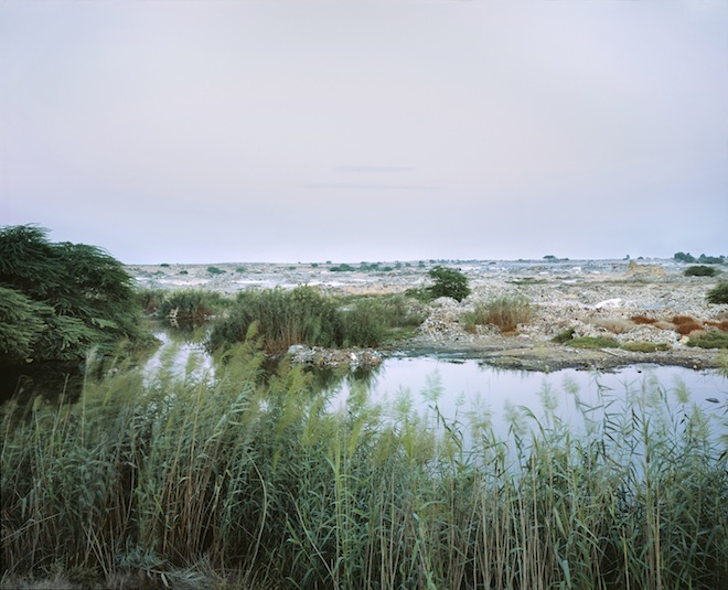 Art, constructed wetland, photography, Richard Allenby-Pratt, United Arab Emirates, water conservation