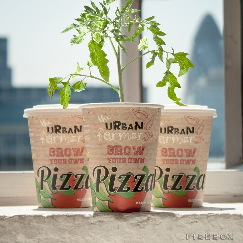 grow your own veggie pizza