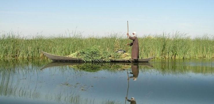 iraq-marshlands.jpg